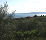 Blick auf Bolsena und den Bolsenasee