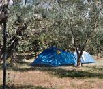 Bolsenasee Camping Monterotondo